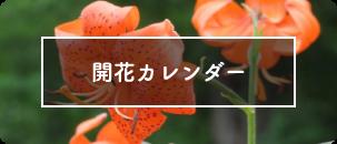 開花カレンダー