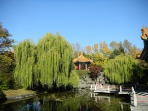 中国庭園2