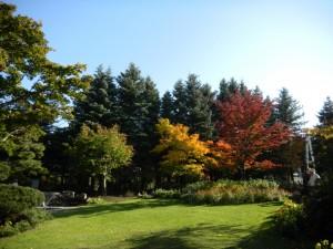 ポートランド庭園2