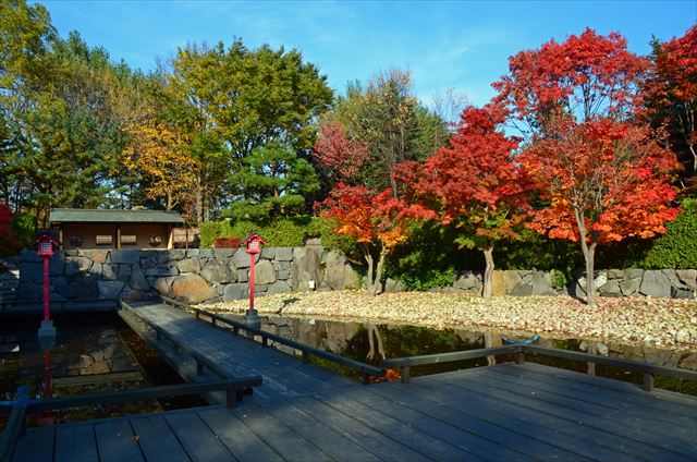 日本庭園2015-1_R