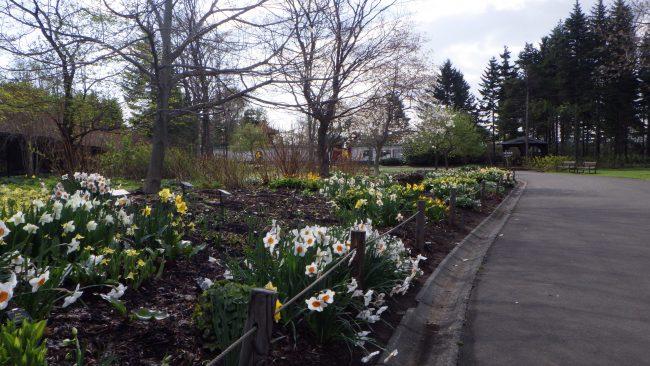 世界の庭園ボーダー花壇