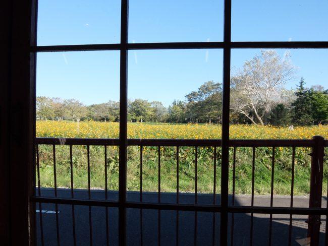 リリートレイン駅舎窓