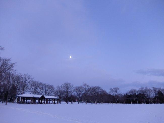 冬の芝生広場