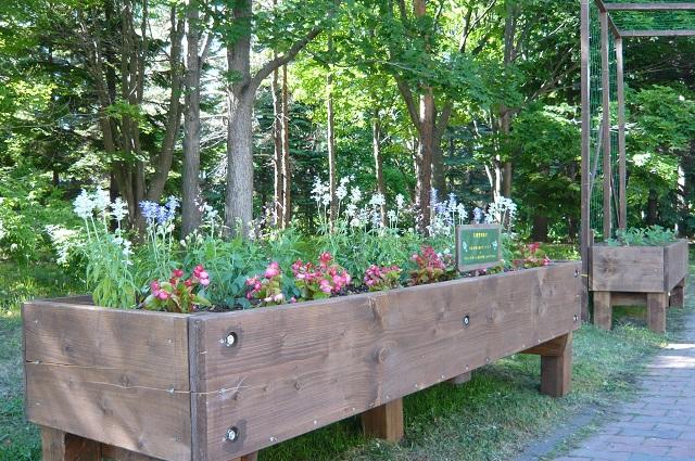 レイズドベッドにお花の植え込みを♪