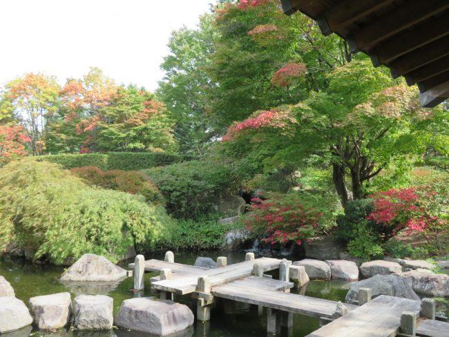 日本庭園緑葉と紅葉