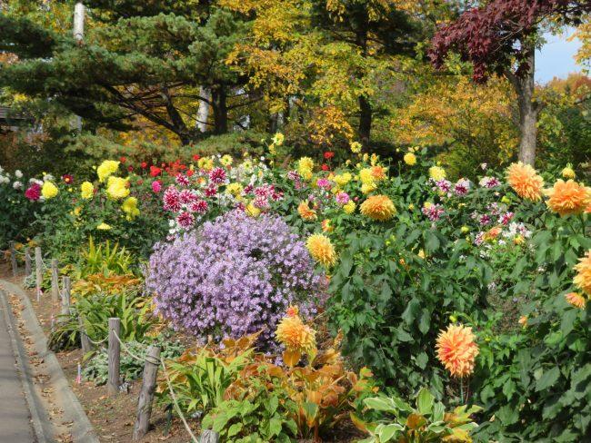 世界の庭園入口ボーダー花壇