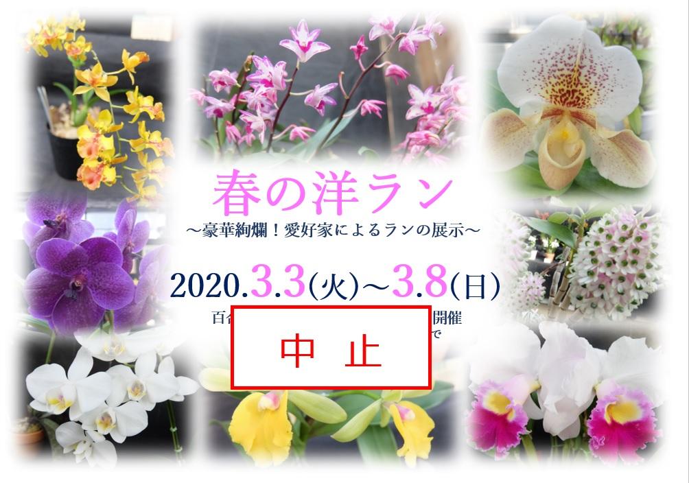 春の洋ラン展中止ポスター