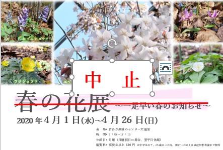 春の花展中止ポスター