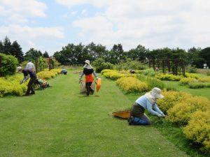 かおりの庭の除草作業