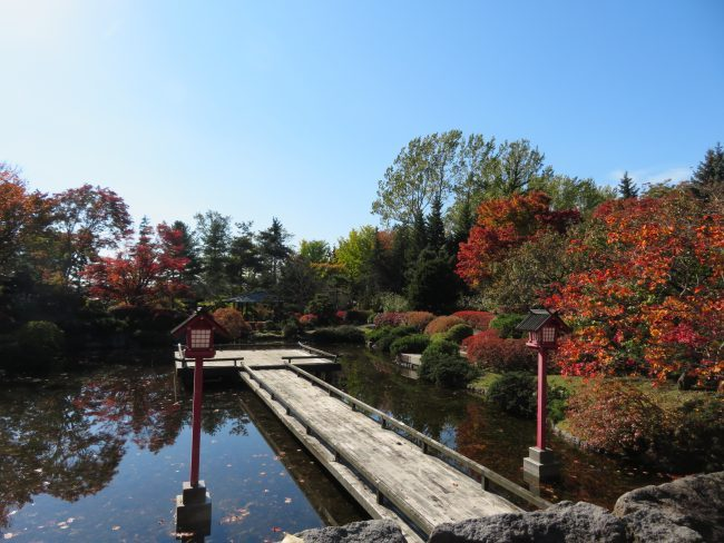 日本庭園の水舞台