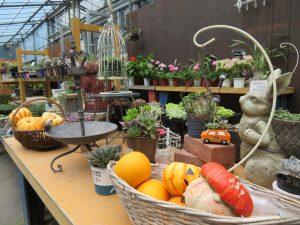寄せ植えや雑貨コーナー
