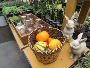 パンプキンや雑貨