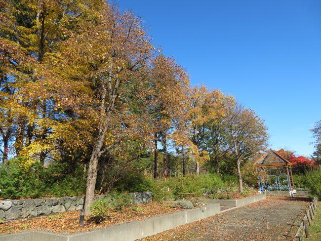 ミュンヘン庭園