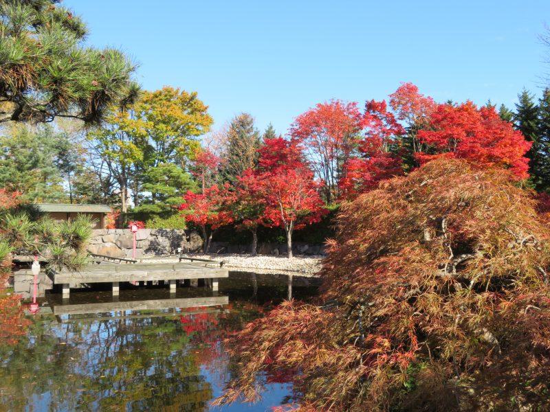世界の庭園11月3日まで無料開放