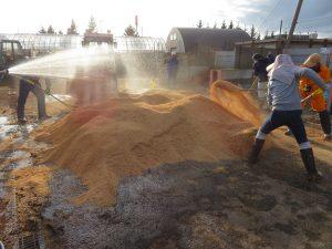 もみがら堆肥制作中