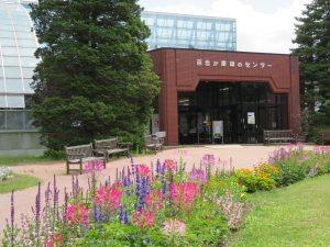 センター前花壇の様子(7月中旬)