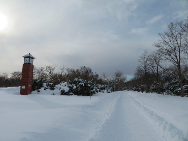 花木園通路