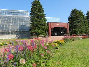緑のセンター温室