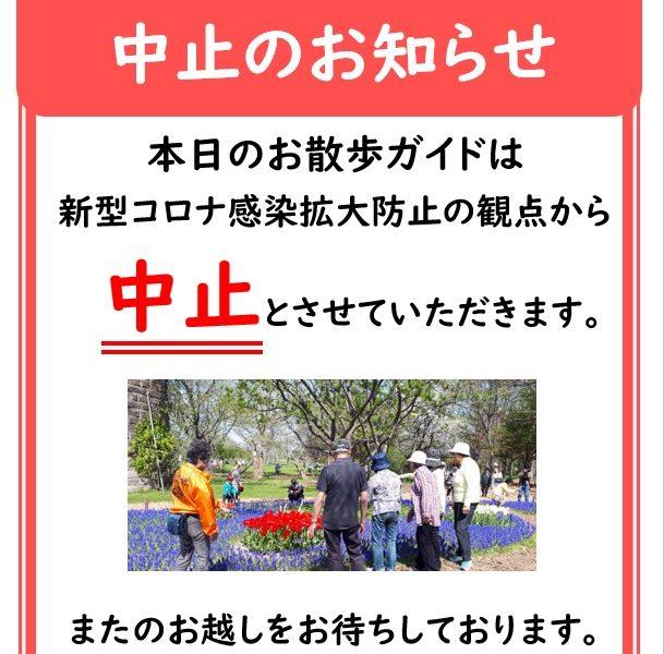 お散歩ガイド中止のお知らせ(5月開催分)