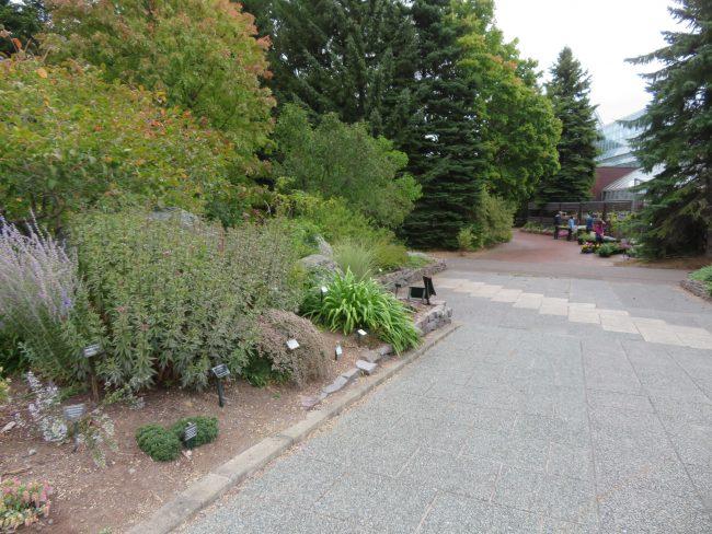 ガーデンショップからボーダー花壇へと続く道